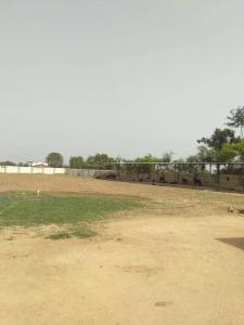 11925 Sq.ft Residential Plot for Sale in Thaltej, Ahmedabad