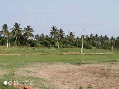 1296 Sq.ft Residential Plot for Sale in Bangla Thota, Nellore