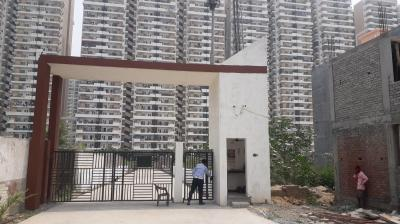 Gallery Cover Image of 1250 Sq.ft 3 BHK Apartment for rent in Bhoomik Ashoka Greens, Noida Extension for 9000
