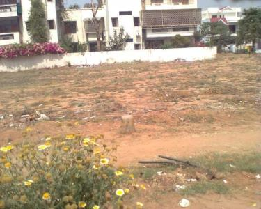 360 Sq.ft Residential Plot for Sale in Sector 54, Gurgaon