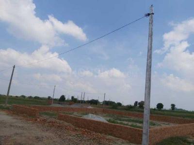 500 Sq.ft Residential Plot for Sale in Ambedkar City, Noida