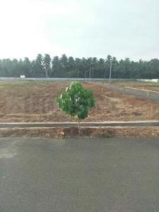 Gallery Cover Image of  Sq.ft Residential Plot for buy in Kovilpalayam for 3150000