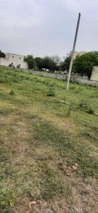 900 Sq.ft Residential Plot for Sale in Sector 162, Noida