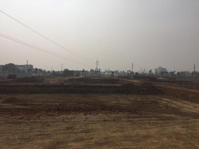 Gallery Cover Image of  Sq.ft Residential Plot for buy in Madhopura for 700000