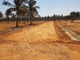 Gallery Cover Image of 1200 Sq.ft Residential Plot for buy in Hoskote for 1600000
