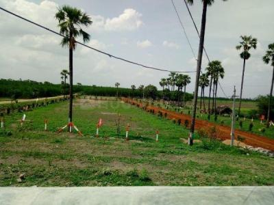 Gallery Cover Image of  Sq.ft Residential Plot for buy in Benz Circle for 450000