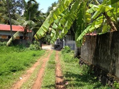 3185 Sq.ft Residential Plot for Sale in Kudamaloor, Kottayam