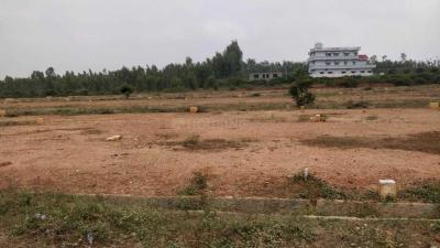 Gallery Cover Image of 1200 Sq.ft Residential Plot for buy in Whitefield for 1980000