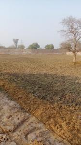 450 Sq.ft Residential Plot for Sale in Tigaon, Faridabad