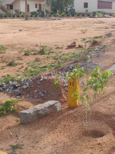 Gallery Cover Image of  Sq.ft Residential Plot for buy in Mansanpally for 2375000