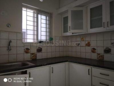 Gallery Cover Image of 600 Sq.ft 1 BHK Apartment for rent in Brookefield for 13000