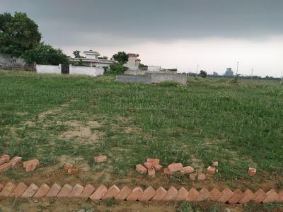 Gallery Cover Image of 60 Sq.ft Residential Plot for buy in Noida Extension for 890000
