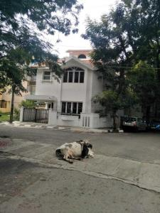 Gallery Cover Image of 2000 Sq.ft 3 BHK Independent House for buy in Koramangala for 35000000
