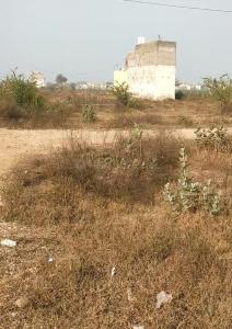 540 Sq.ft Residential Plot for Sale in Tikawali, Faridabad