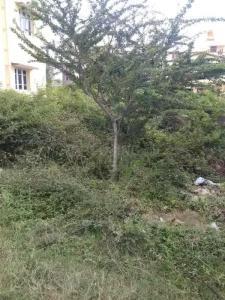 1400 Sq.ft Residential Plot for Sale in JP Nagar, Bangalore