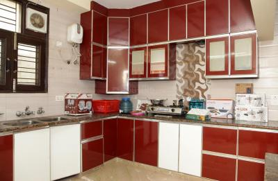 Kitchen Image of PG 4643075 Sector 10 Dwarka in Sector 10 Dwarka