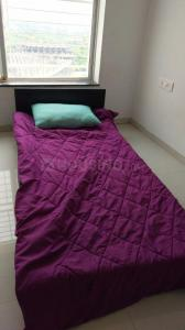 Gallery Cover Image of 1400 Sq.ft 3 BHK Independent House for rent in Kohinoor Tinsel Town Phase II, Hinjewadi for 25000