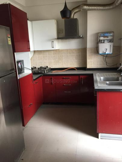 सेक्टर 49 में द लेजेंड पीजी के किचन की तस्वीर