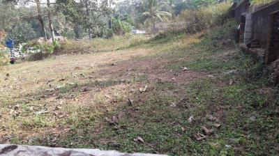 Gallery Cover Image of  Sq.ft Residential Plot for buy in Kodimatha for 2000000