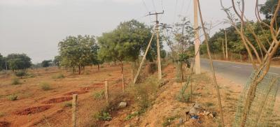 200 Sq.ft Residential Plot for Sale in Shamirpet, Hyderabad