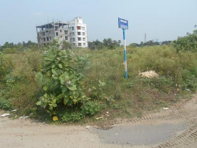 Gallery Cover Image of  Sq.ft Residential Plot for buy in New Town for 10100000