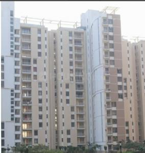 Gallery Cover Image of 646 Sq.ft 2 BHK Apartment for rent in Authority Flats, Yeida for 7500