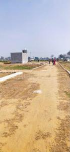 900 Sq.ft Residential Plot for Sale in Sector 91, Faridabad