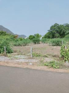 Gallery Cover Image of  Sq.ft Residential Plot for buy in Chinmaya Nagar for 1898376