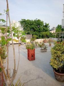 Gallery Cover Image of 2850 Sq.ft 4 BHK Independent Floor for rent in Hauz Khas for 90000