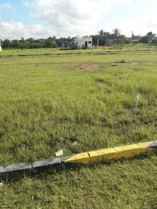 Gallery Cover Image of  Sq.ft Residential Plot for buy in Tambaram for 1012500
