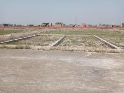 150 Sq.ft Residential Plot for Sale in Shahberi, Greater Noida