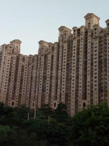 Gallery Cover Image of 2600 Sq.ft 3 BHK Apartment for rent in DLF Phase 4 for 60000