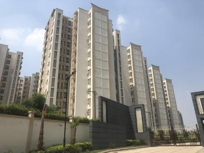 Gallery Cover Image of 1000 Sq.ft 2 BHK Apartment for buy in Sector 67 for 4000000