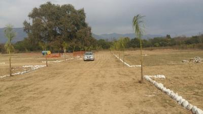 Gallery Cover Image of  Sq.ft Residential Plot for buy in Bhauwala for 850000