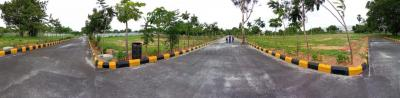 135 Sq.ft Residential Plot for Sale in Shamirpet, Hyderabad