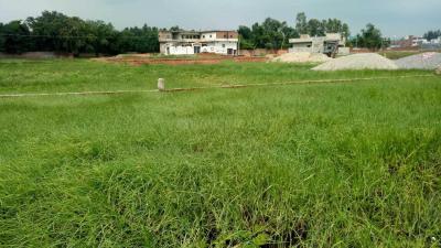 1350 Sq.ft Residential Plot for Sale in Nagwa Lanka, Varanasi