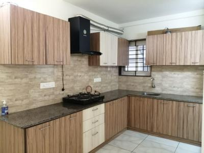 Gallery Cover Image of 1500 Sq.ft 2 BHK Apartment for rent in Koramangala for 35000