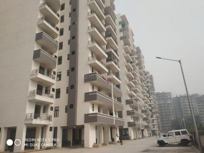 Gallery Cover Image of 850 Sq.ft 3 BHK Apartment for rent in Amolik Heights, Sector 88 for 12000