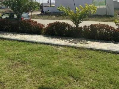 1250 Sq.ft Residential Plot for Sale in Manglia, Indore