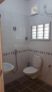 Bathroom Image of PG 4441640 Bommanahalli in Bommanahalli