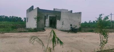 3600 Sq.ft Residential Plot for Sale in Tugalpur Village, Greater Noida