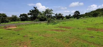 Gallery Cover Image of  Sq.ft Residential Plot for buy in Khed for 399999