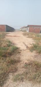 900 Sq.ft Residential Plot for Sale in Kosi Kalan, Mathura