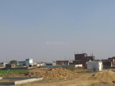 Gallery Cover Image of 900 Sq.ft Residential Plot for buy in Sector 137 for 950000