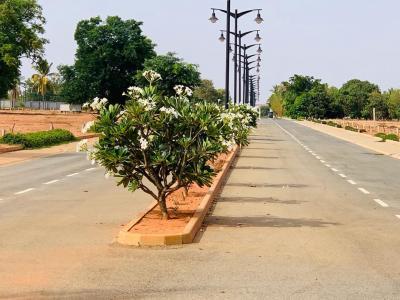 1500 Sq.ft Residential Plot for Sale in Ashok Nagar, Bangalore