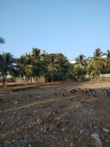 Gallery Cover Image of 10000 Sq.ft Residential Plot for buy in Andheri East for 100000000