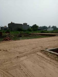 50 Sq.ft Residential Plot for Sale in Ibadullapur Urf Badalpur, Greater Noida