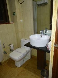 Common Bathroom Image of PG 4731638 Sector 14 in Sector 14