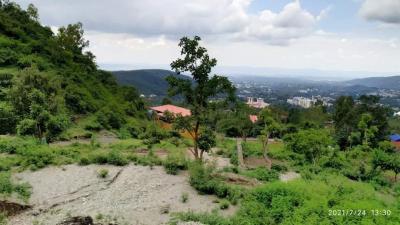 1800 Sq.ft Residential Plot for Sale in Ekta Vihar, Dehradun