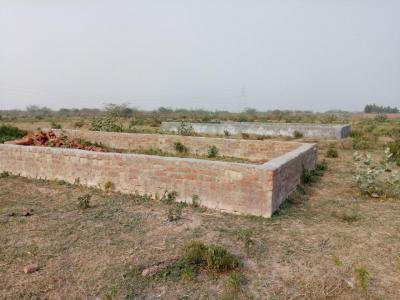 Gallery Cover Image of  Sq.ft Residential Plot for buy in Sector 151 for 200000